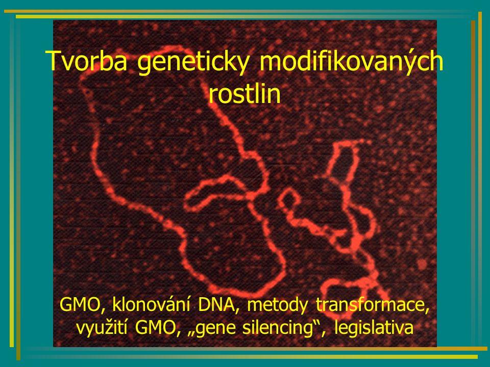 GMO Geneticky modifikovaný organismus: –Organismus nesoucí geny, které byly začleněny metodami genového inženýrství (transformací - transgenoze) Do této kategorie nespadají: –Výsledky hybridizace, mutageneze a polyploidizace, ani somatické hybridizace.