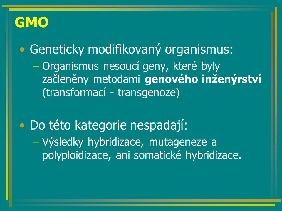 Selekční geny GUS – semena borůvky Luciferáza - tabák