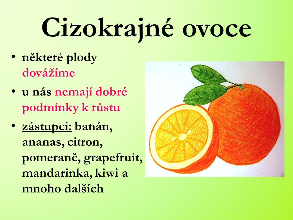 Cizokrajné ovoce některé plody dovážíme u nás nemají dobré podmínky k růstu zástupci: banán, ananas, citron, pomeranč, grapefruit, mandarinka, kiwi a mnoho dalších