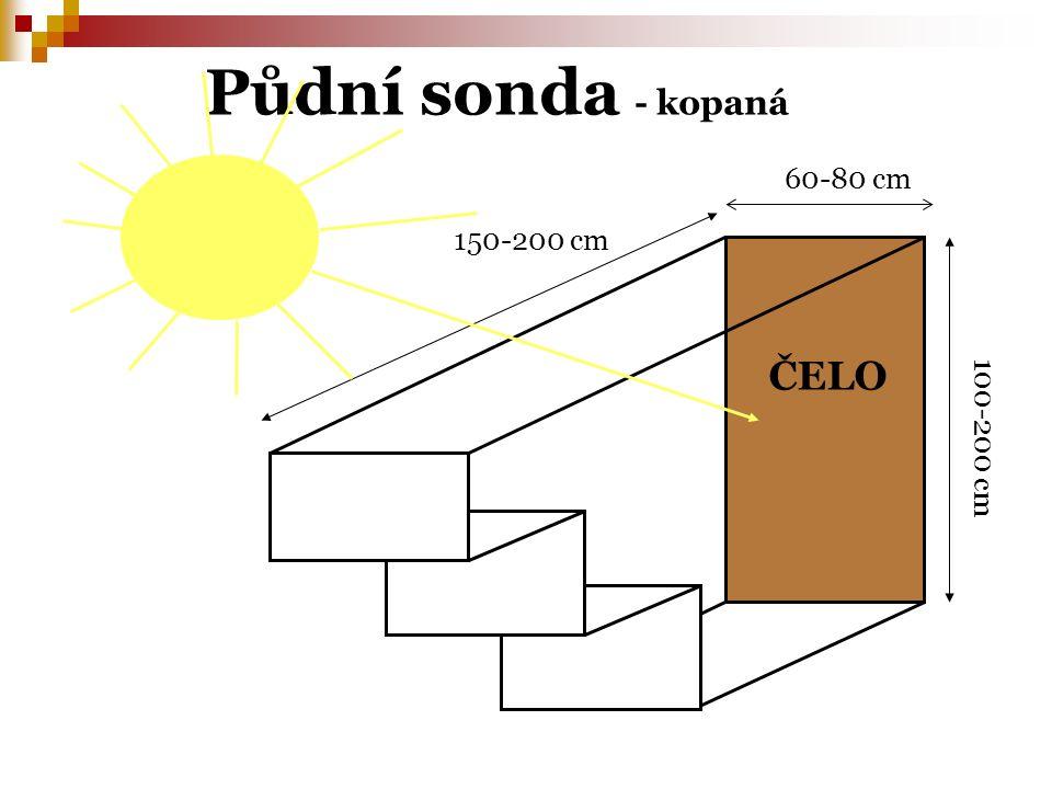 Půdní sonda - kopaná ČELO 60-80 cm 150-200 cm 100-200 cm