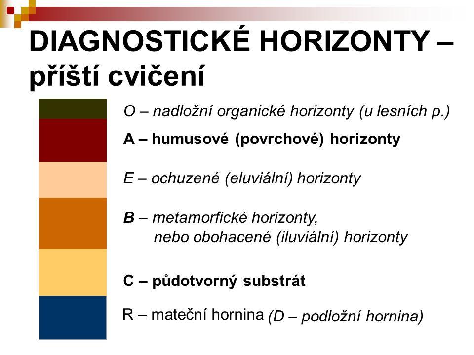 DIAGNOSTICKÉ HORIZONTY – příští cvičení R – mateční hornina C – půdotvorný substrát A – humusové (povrchové) horizonty B – metamorfické horizonty, neb