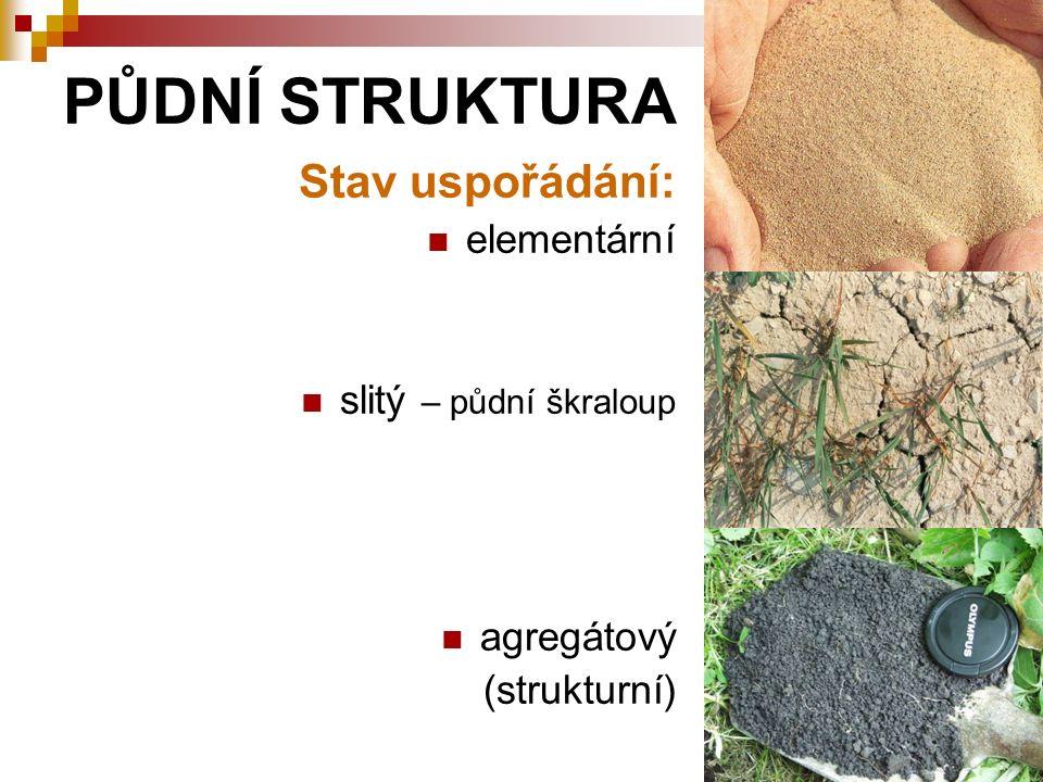 PŮDNÍ STRUKTURA Stav uspořádání: elementární slitý – půdní škraloup agregátový (strukturní)