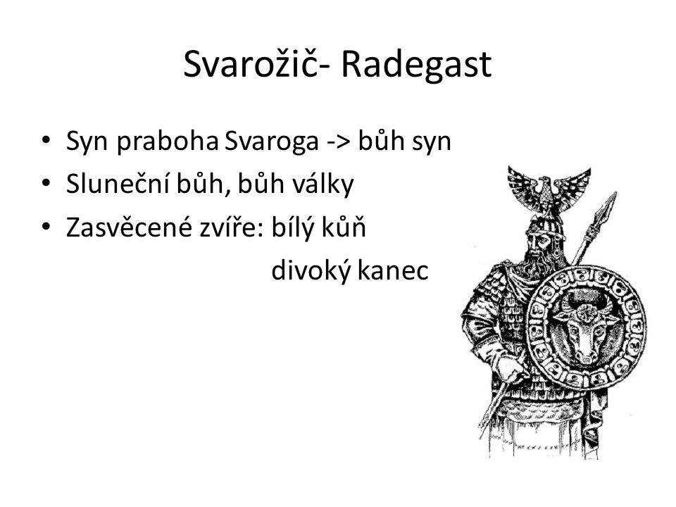 Svarožič- Radegast Syn praboha Svaroga -> bůh syn Sluneční bůh, bůh války Zasvěcené zvíře: bílý kůň divoký kanec