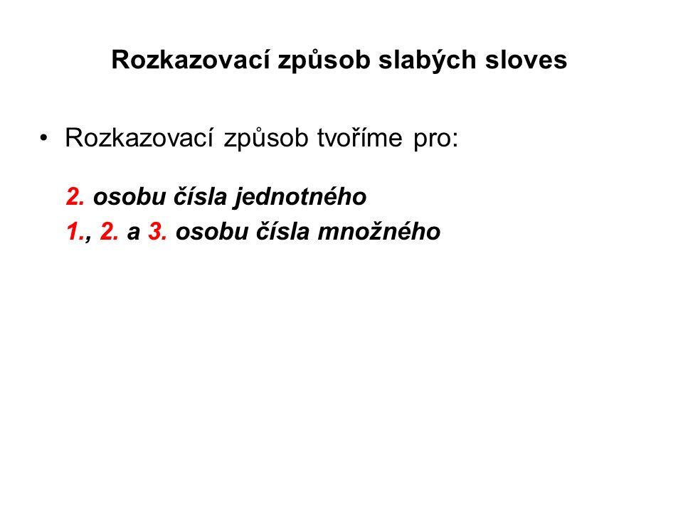 mal/en - malovat časovánírozkazovací způsobčeský překlad 1.