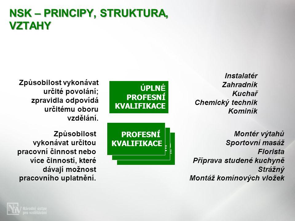 NSK – PRINCIPY, STRUKTURA, VZTAHY Způsobilost vykonávat určité povolání; zpravidla odpovídá určitému oboru vzdělání. Instalatér Zahradník Kuchař Chemi