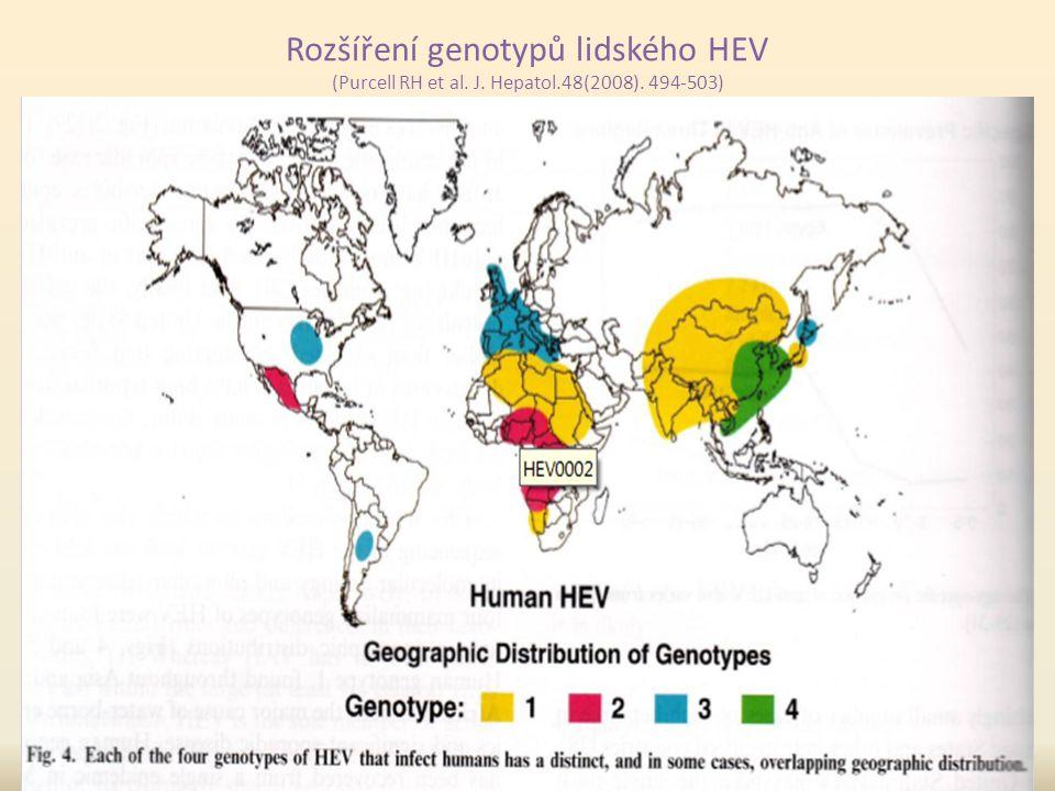 Rozšíření genotypů lidského HEV (Purcell RH et al. J. Hepatol.48(2008). 494-503)