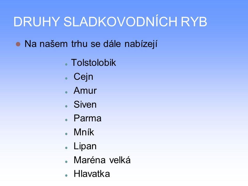 DRUHY SLADKOVODNÍCH RYB Na našem trhu se dále nabízejí Tolstolobik Cejn Amur Siven Parma Mník Lipan Maréna velká Hlavatka