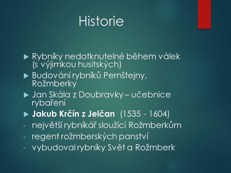 Historie  Rybníky nedotknutelné během válek (s výjimkou husitských)  Budování rybníků Pernštejny, Rožmberky  Jan Skála z Doubravky – učebnice rybaření  Jakub Krčín z Jelčan (1535 - 1604) - největší rybníkář sloužící Rožmberkům - regent rožmberských panství - vybudoval rybníky Svět a Rožmberk