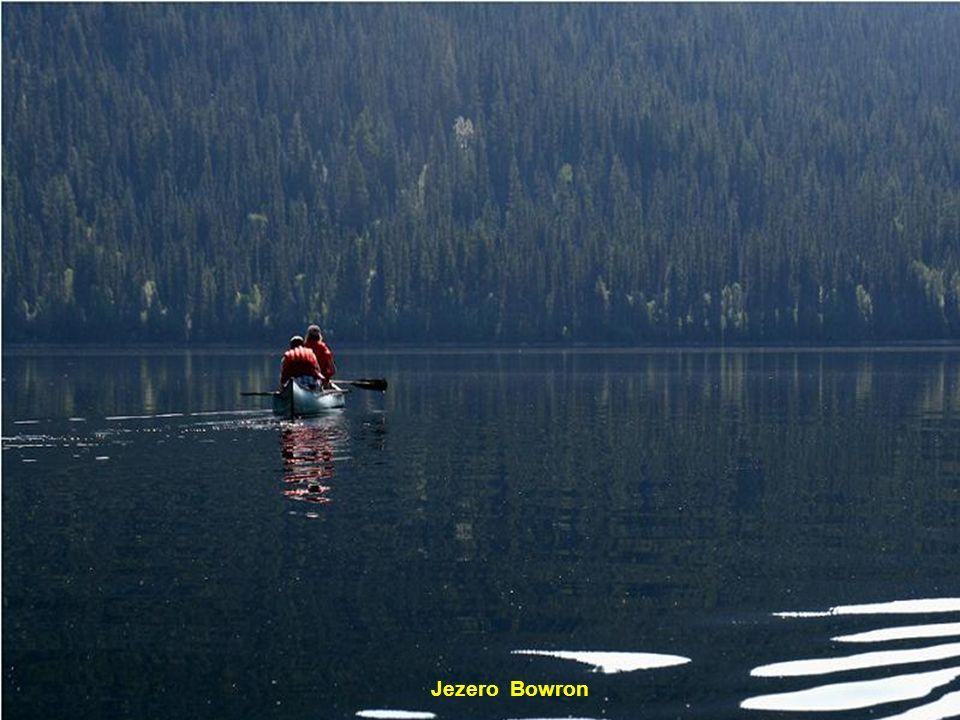 Jezero Bow