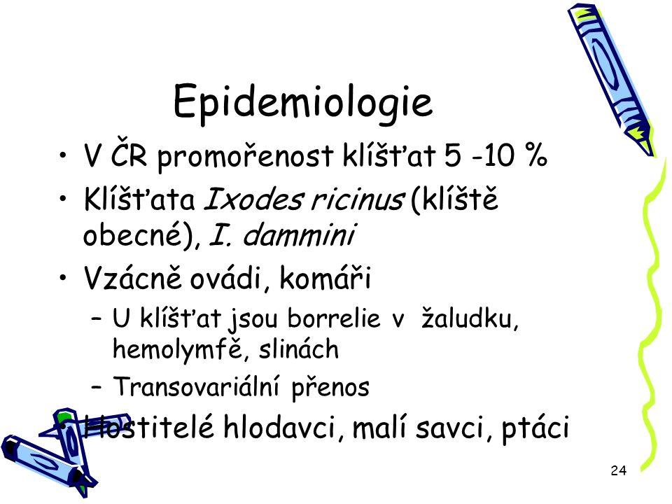 24 Epidemiologie V ČR promořenost klíšťat 5 -10 % Klíšťata Ixodes ricinus (klíště obecné), I.