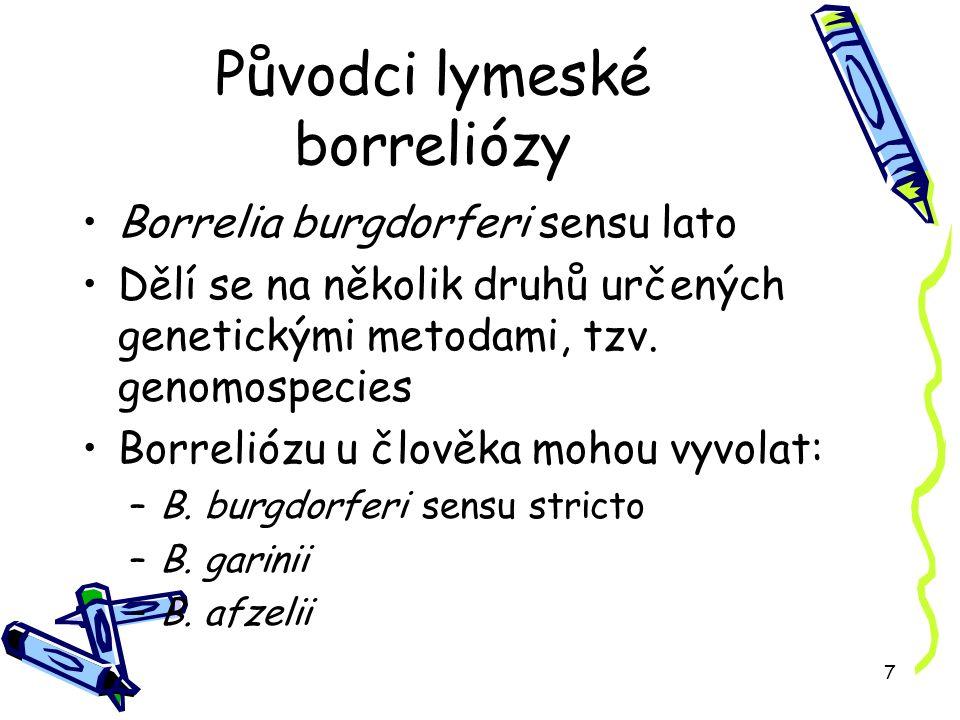 7 Původci lymeské borreliózy Borrelia burgdorferi sensu lato Dělí se na několik druhů určených genetickými metodami, tzv.