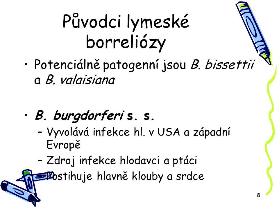 9 Původci lymeské borreliózy B.garinii –Evropa –Zdroj – hlavně ptáci –Neurologické projevy B.