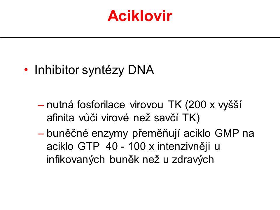 Aciklovir Inhibitor syntézy DNA –nutná fosforilace virovou TK (200 x vyšší afinita vůči virové než savčí TK) –buněčné enzymy přeměňují aciklo GMP na a