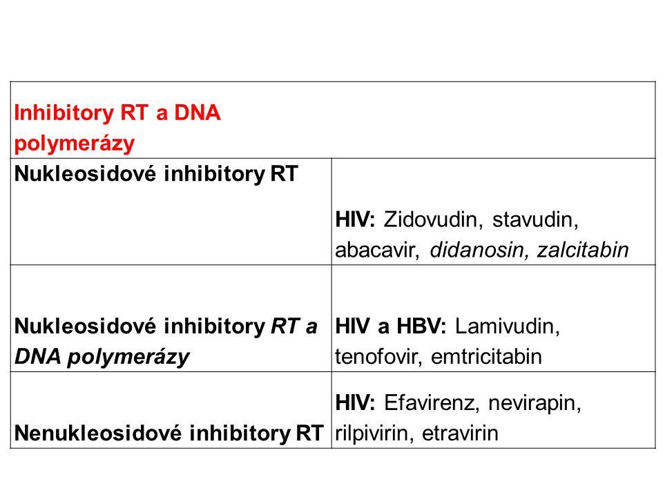 Inhibitory RT a DNA polymerázy Nukleosidové inhibitory RT HIV: Zidovudin, stavudin, abacavir, didanosin, zalcitabin Nukleosidové inhibitory RT a DNA polymerázy HIV a HBV: Lamivudin, tenofovir, emtricitabin Nenukleosidové inhibitory RT HIV: Efavirenz, nevirapin, rilpivirin, etravirin
