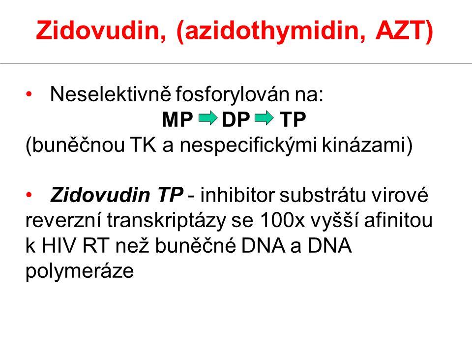 Zidovudin, (azidothymidin, AZT) Neselektivně fosforylován na: MP DP TP (buněčnou TK a nespecifickými kinázami) Zidovudin TP - inhibitor substrátu virové reverzní transkriptázy se 100x vyšší afinitou k HIV RT než buněčné DNA a DNA polymeráze