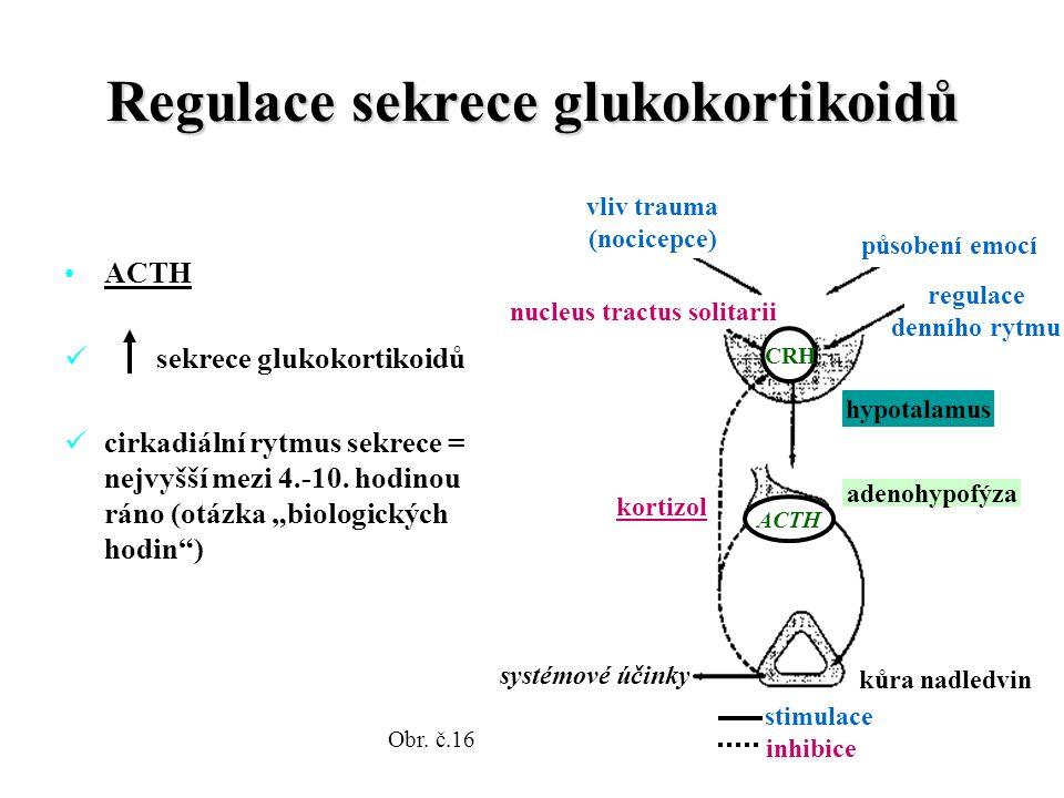 Regulace sekrece glukokortikoidů ACTH sekrece glukokortikoidů cirkadiální rytmus sekrece = nejvyšší mezi 4.-10.