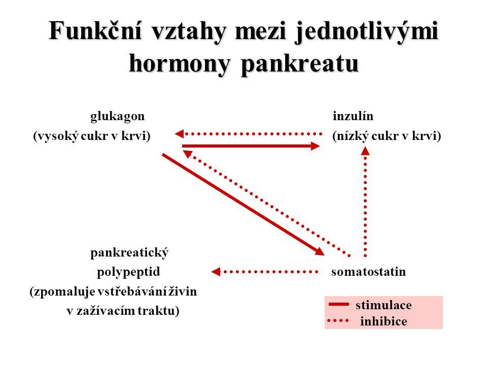 Funkční vztahy mezi jednotlivými hormony pankreatu glukagon inzulín (vysoký cukr v krvi) (nízký cukr v krvi) pankreatický polypeptid somatostatin (zpomaluje vstřebávání živin v zažívacím traktu) stimulace inhibice