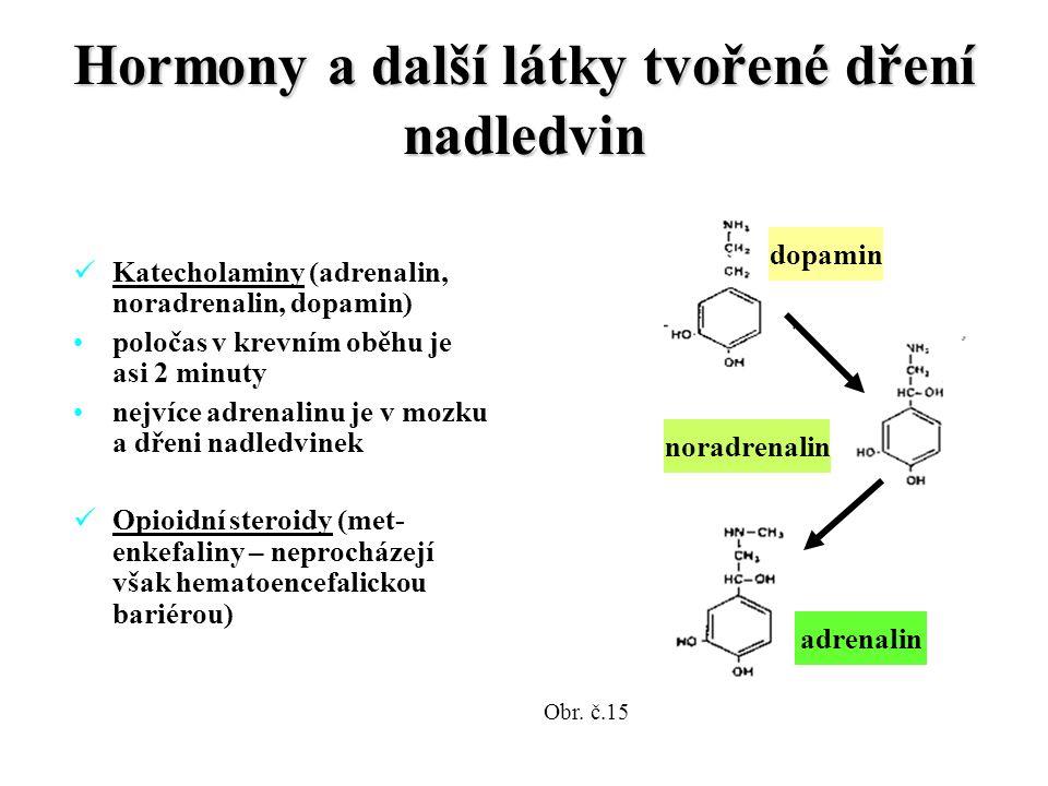Hormony a další látky tvořené dření nadledvin Katecholaminy (adrenalin, noradrenalin, dopamin) poločas v krevním oběhu je asi 2 minuty nejvíce adrenalinu je v mozku a dřeni nadledvinek Opioidní steroidy (met- enkefaliny – neprocházejí však hematoencefalickou bariérou) dopamin noradrenalin adrenalin Obr.