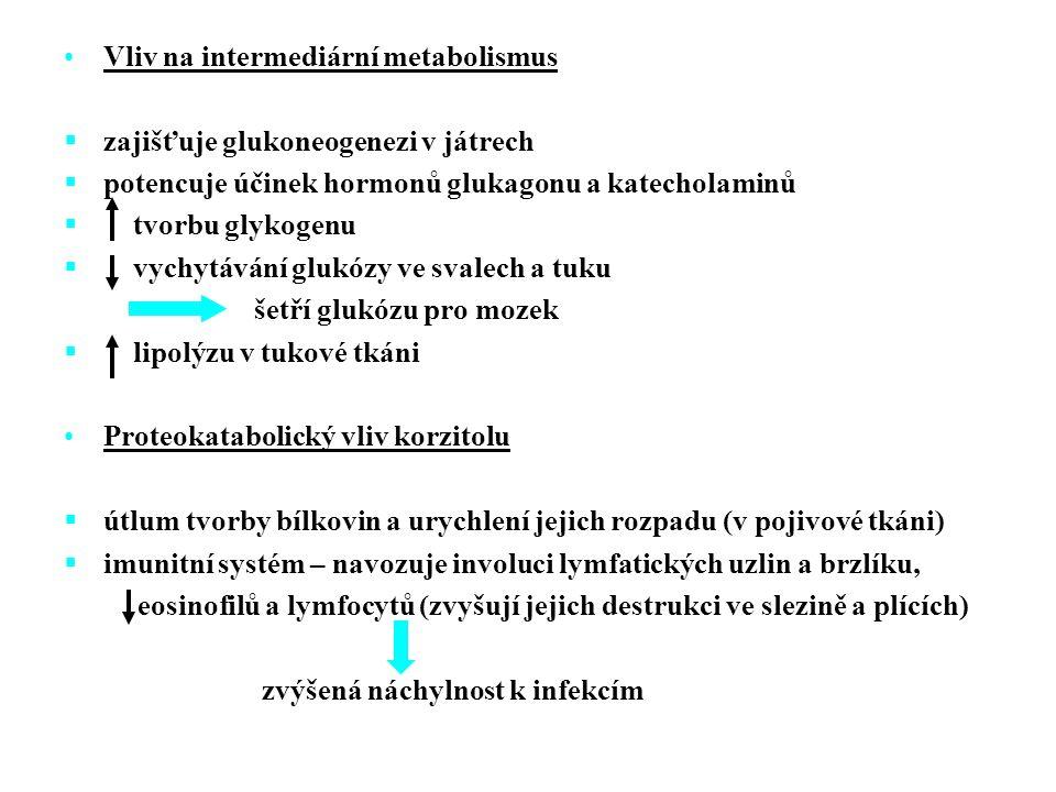 Sekretin  tvořen v buňkách horního úseku tenkého střeva  Účinky:  vylučování bikarbonátu buňkami vývodu slinivky břišní a žluče  sekrece HCl GIP (gastrointestinální peptid, na glukóze závislý insulinotropní polypeptid)  tvořen v buňkách dvanácterníku a tenkého střeva  Účinky:  žaludeční sekreci a motilitu  sekreci B buňky slinivky břišní