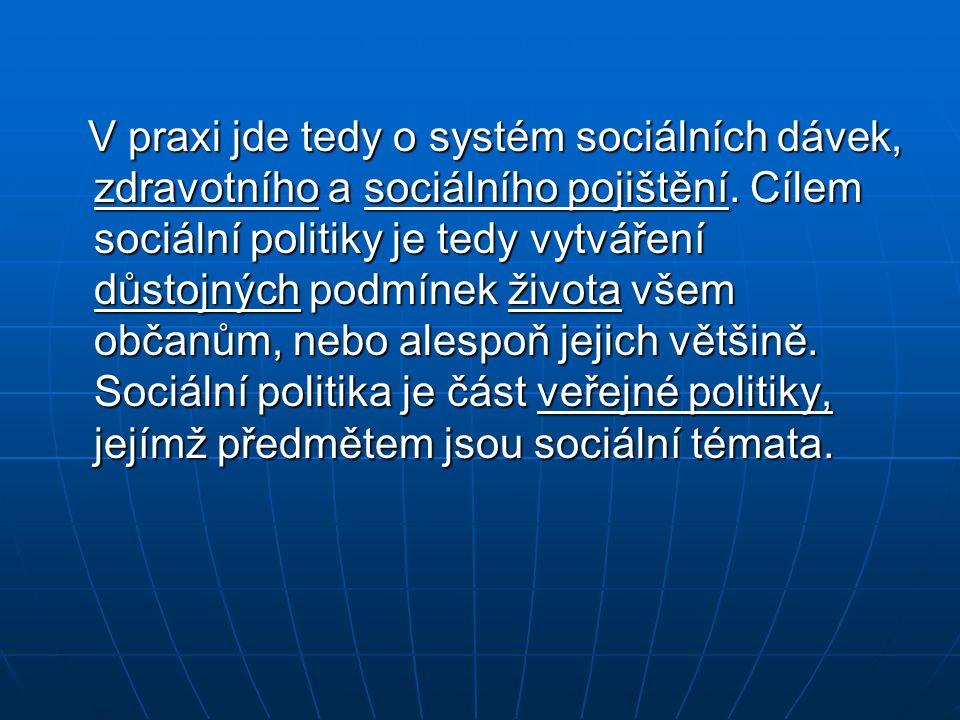 V praxi jde tedy o systém sociálních dávek, zdravotního a sociálního pojištění. Cílem sociální politiky je tedy vytváření důstojných podmínek života v