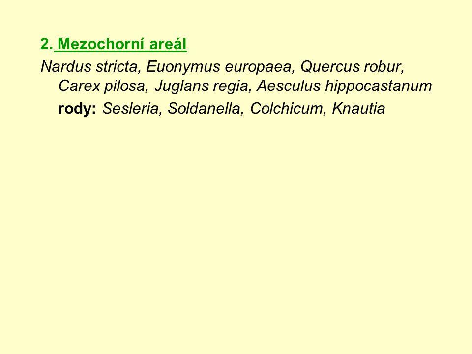2. Mezochorní areál Nardus stricta, Euonymus europaea, Quercus robur, Carex pilosa, Juglans regia, Aesculus hippocastanum rody: Sesleria, Soldanella,