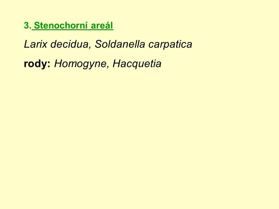 3. Stenochorní areál Larix decidua, Soldanella carpatica rody: Homogyne, Hacquetia