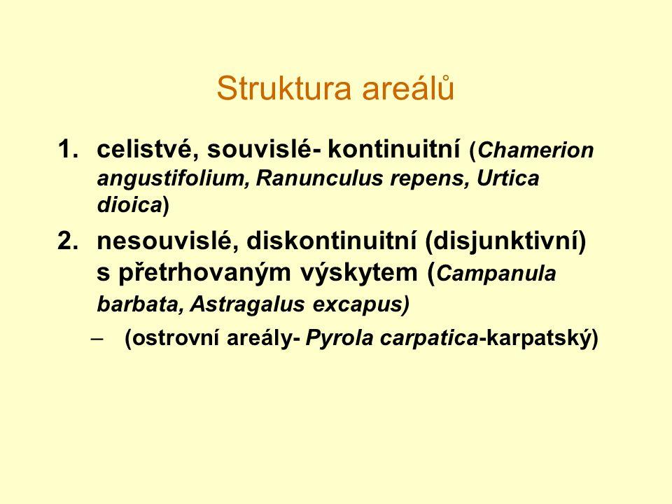 Struktura areálů 1.celistvé, souvislé- kontinuitní (Chamerion angustifolium, Ranunculus repens, Urtica dioica) 2.nesouvislé, diskontinuitní (disjunktivní) s přetrhovaným výskytem ( Campanula barbata, Astragalus excapus) –(ostrovní areály- Pyrola carpatica-karpatský)