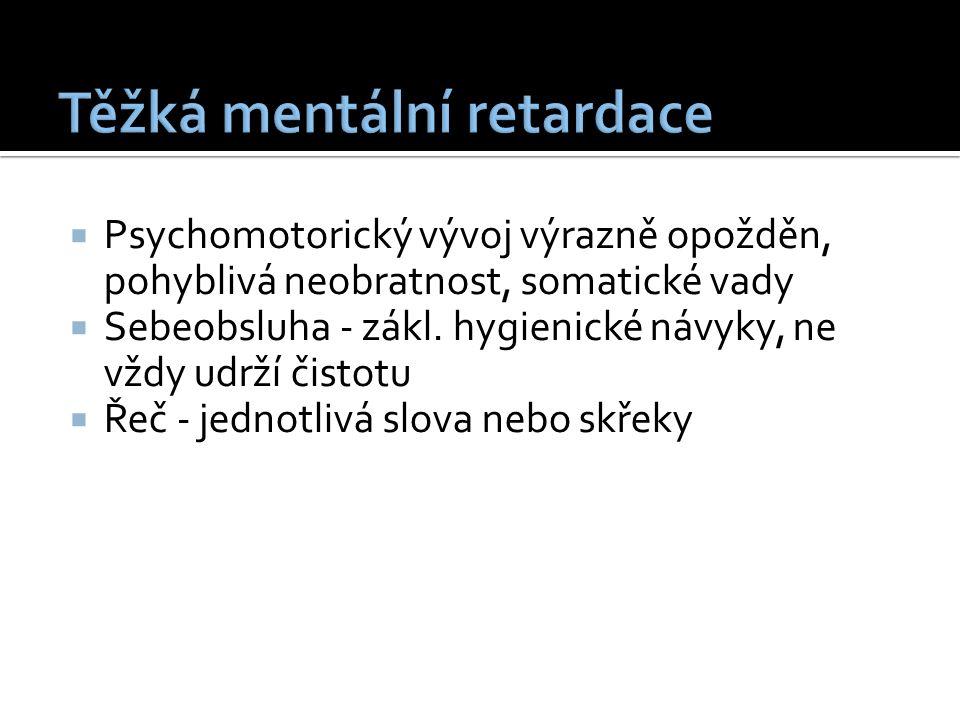  Psychomotorický vývoj výrazně opožděn, pohyblivá neobratnost, somatické vady  Sebeobsluha - zákl.