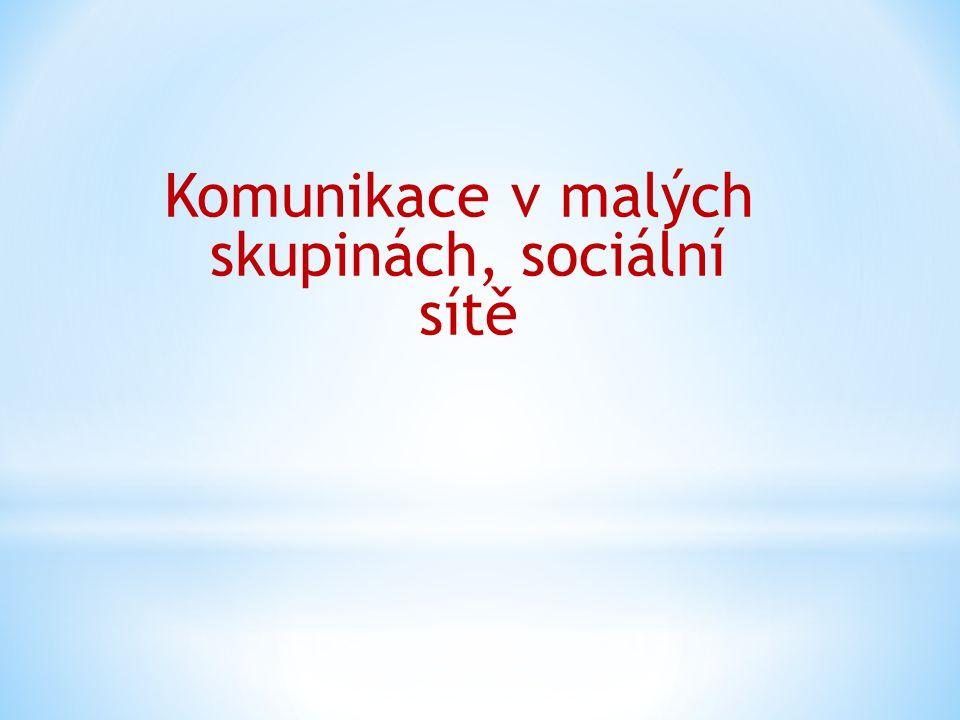 Komunikace v malých skupinách, sociální sítě