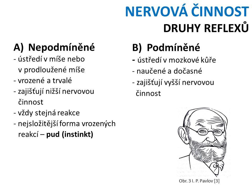 NERVOVÁ ČINNOST DRUHY REFLEXŮ A)Nepodmíněné - ústředí v míše nebo v prodloužené míše - vrozené a trvalé - zajišťují nižší nervovou činnost - vždy stejná reakce - nejsložitější forma vrozených reakcí – pud (instinkt) B)Podmíněné - ústředí v mozkové kůře - naučené a dočasné - zajišťují vyšší nervovou činnost Obr.