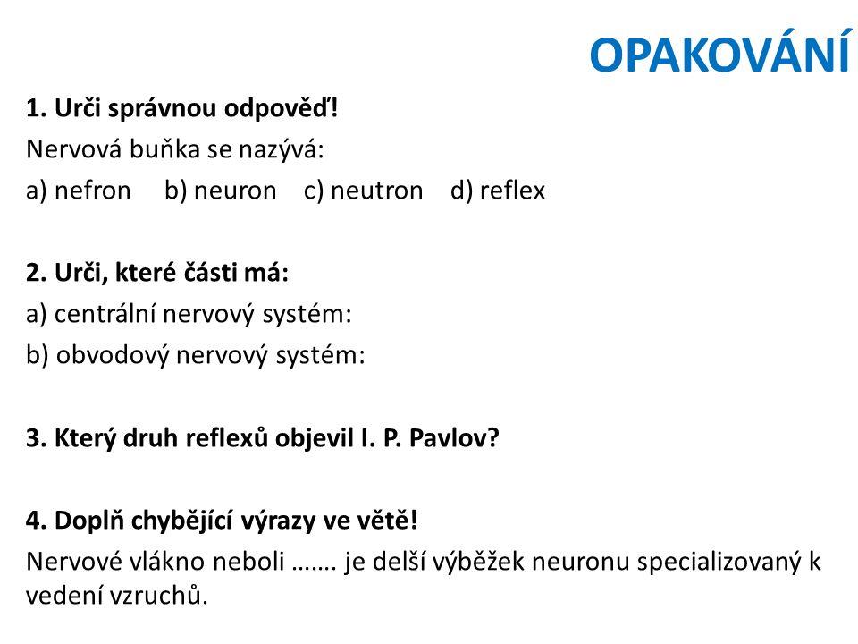 OPAKOVÁNÍ 1. Urči správnou odpověď! Nervová buňka se nazývá: a) nefron b) neuron c) neutron d) reflex 2. Urči, které části má: a) centrální nervový sy