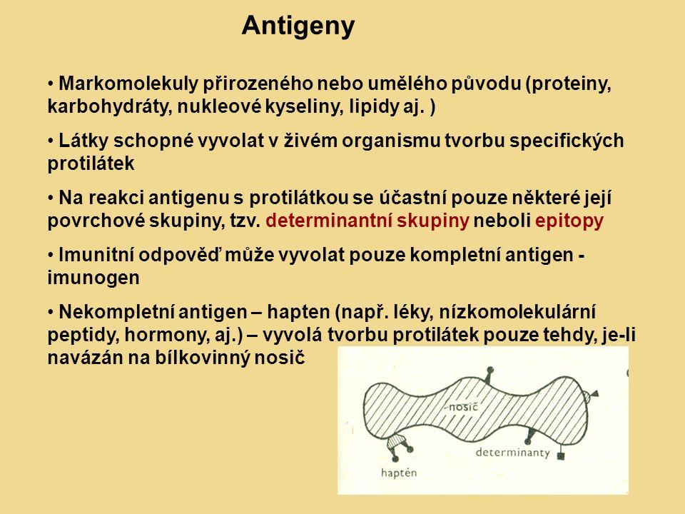 Obr 1: Antigeny – hapten, nosič, determinanty Markomolekuly přirozeného nebo umělého původu (proteiny, karbohydráty, nukleové kyseliny, lipidy aj.