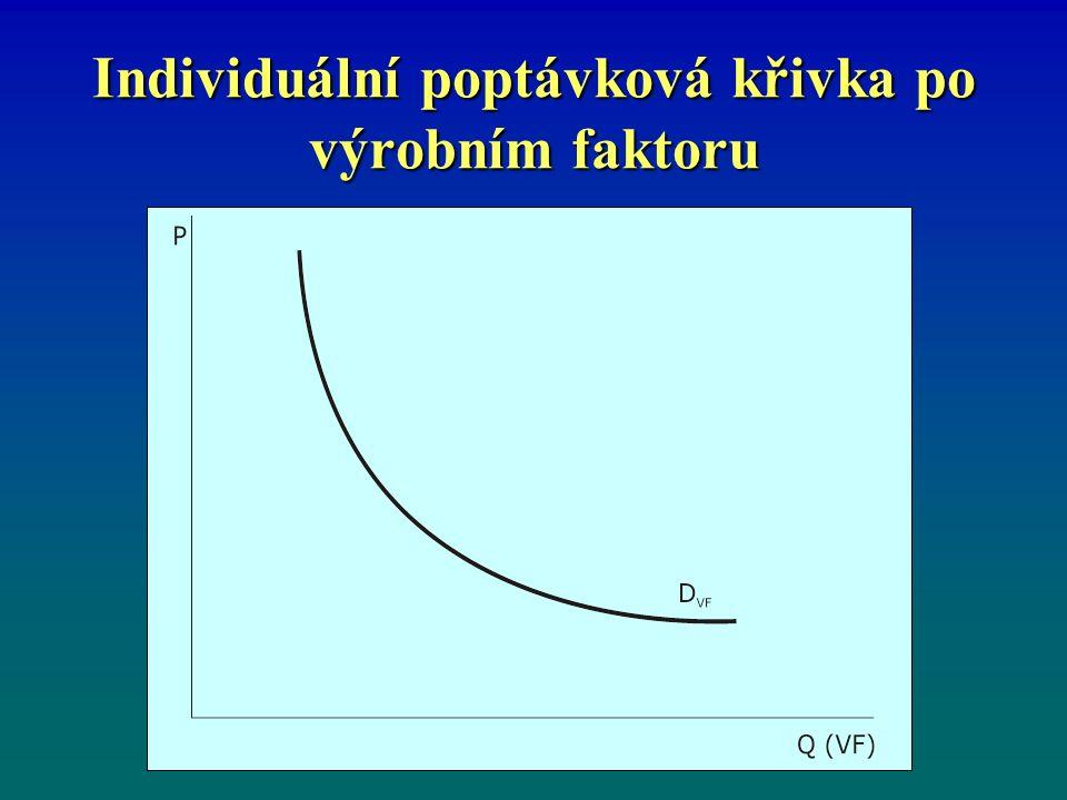 Individuální poptávková křivka po výrobním faktoru