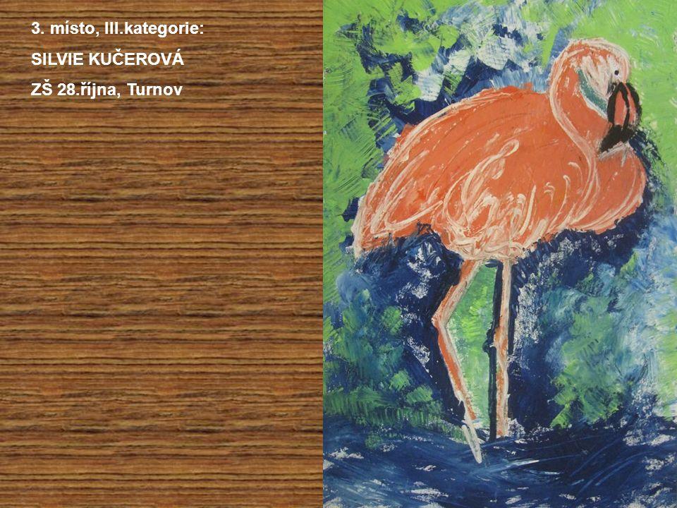 3. místo, III.kategorie: SILVIE KUČEROVÁ ZŠ 28.října, Turnov
