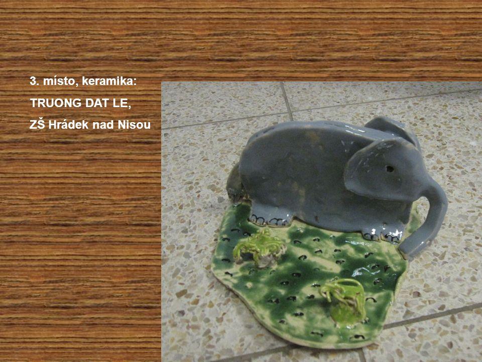 3. místo, keramika: TRUONG DAT LE, ZŠ Hrádek nad Nisou