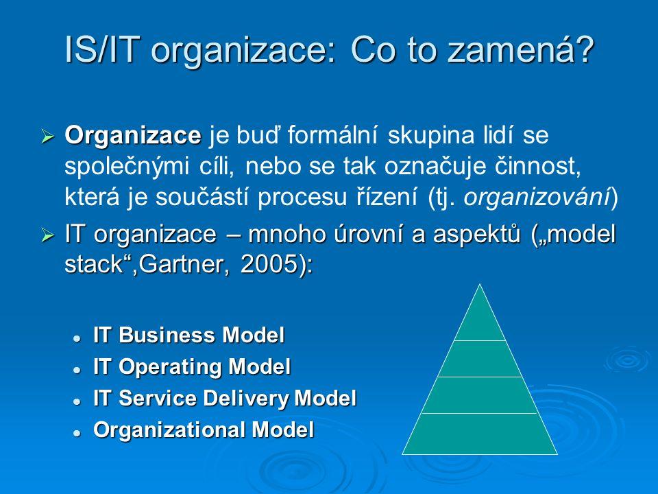4.Maticová organizace v IT funkce vs. projekty funkce vs.