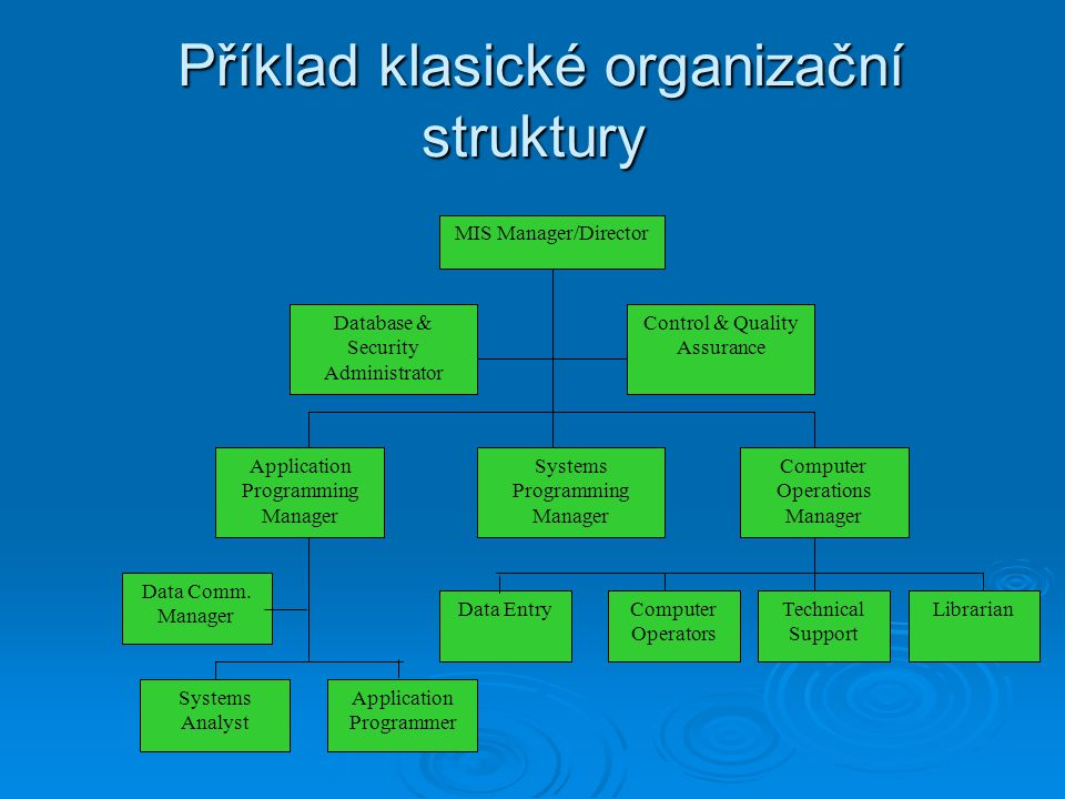 Příklad klasické organizační struktury Příklad klasické organizační struktury MIS Manager/Director Database  Security Administrator Control  Quality Assurance Application Programming Manager Systems Programming Manager Computer Operations Manager Data Comm.