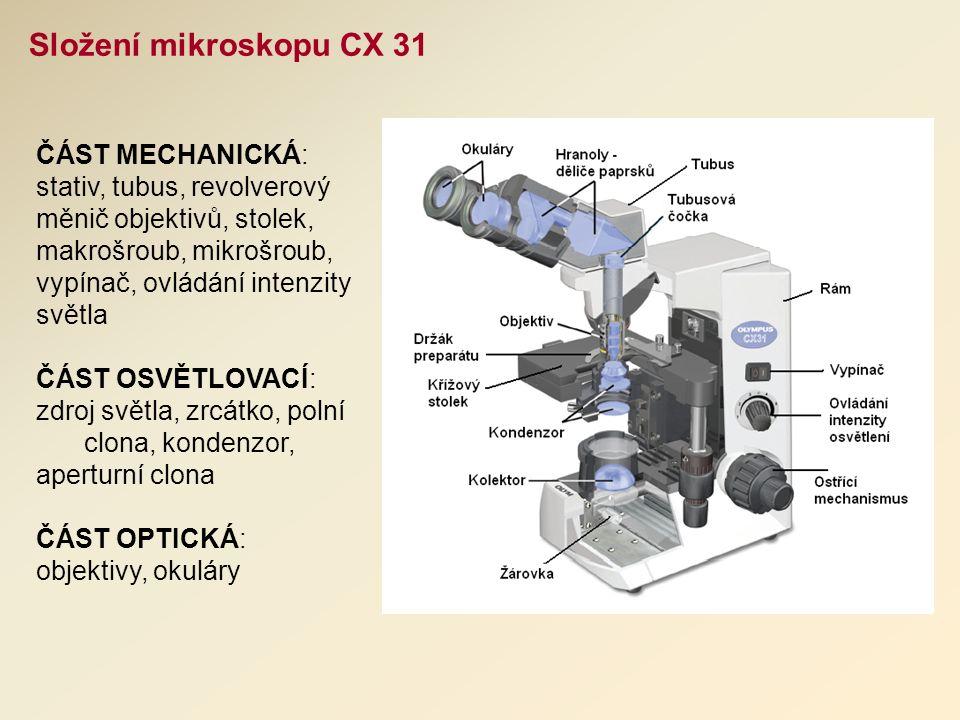 ČÁST MECHANICKÁ: stativ, tubus, revolverový měnič objektivů, stolek, makrošroub, mikrošroub, vypínač, ovládání intenzity světla ČÁST OSVĚTLOVACÍ: zdroj světla, zrcátko, polní clona, kondenzor, aperturní clona ČÁST OPTICKÁ: objektivy, okuláry Složení mikroskopu CX 31