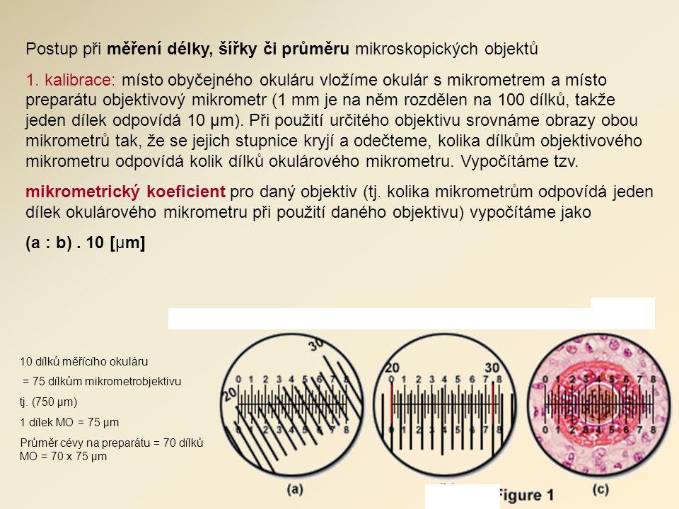 Postup při měření délky, šířky či průměru mikroskopických objektů 1.