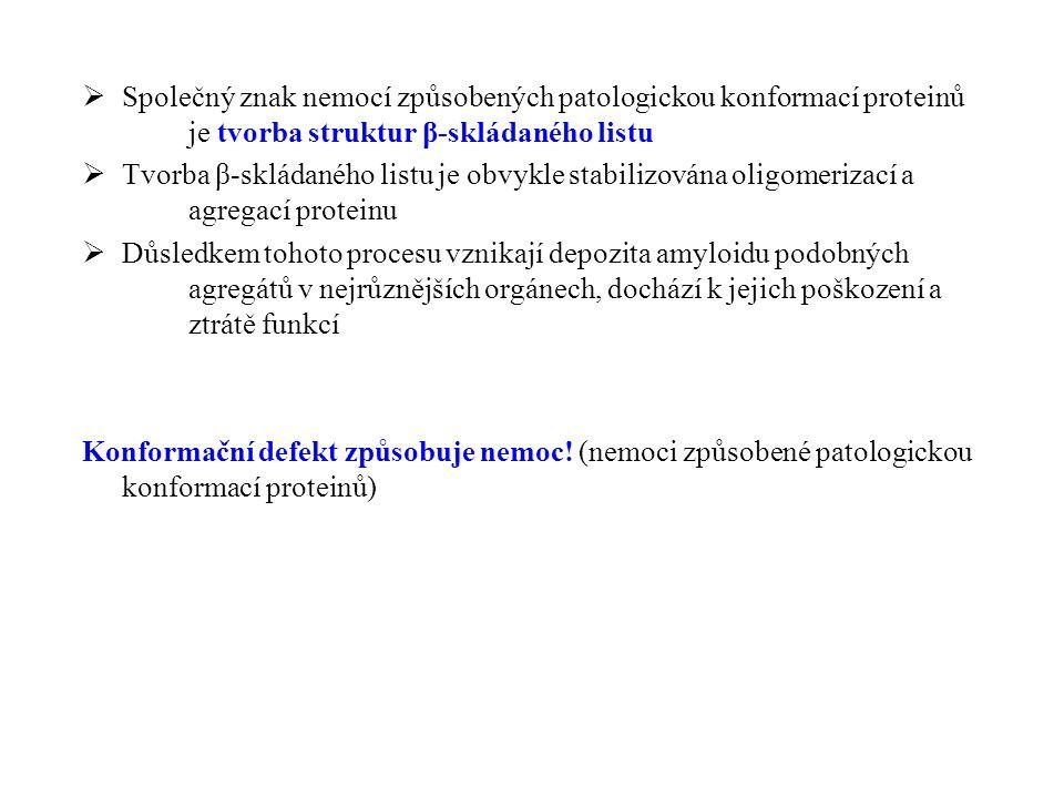NemociProteiny Alzheimerova chorobaAmyloid-β Parkinsonova chorobaα-Synuclein Diabetes mellitus typ II.Amylin Amyotrofická laterální sklerosaSuperoxid dismutasa Amyloidosa spojená s hemodialisou β2-mikroglobulin Cystická fibrosaCystická fibrosa transmembránový regulátor (chloridový kanál) Srpkovitá anémieHemoglobin Hungtingtonova chorobaHuntingtin Creutzfeldt-Jakobova nemocPrion protein Amyloidosy10 různých proteinů