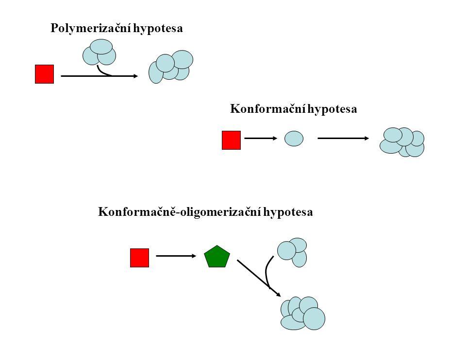 Polymerizační hypotesa  Agregace nastartuje konformační změny proteinů.