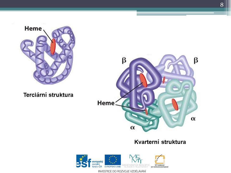 Terciární struktura Kvarterní struktura 8