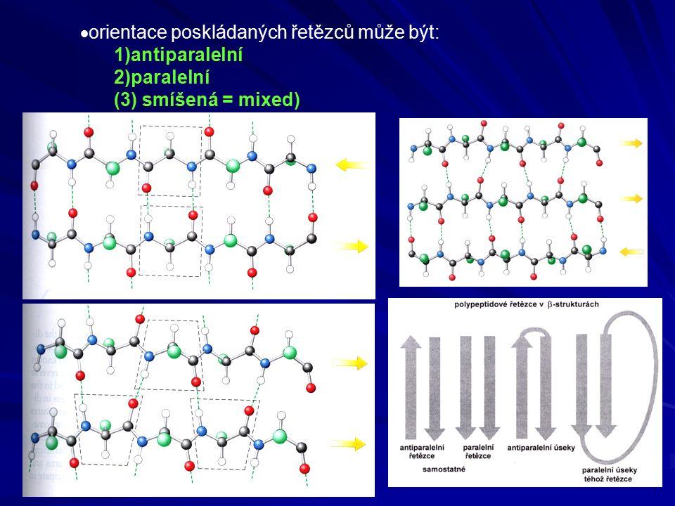  orientace poskládaných řetězců může být: 1)antiparalelní 2)paralelní (3) smíšená = mixed)