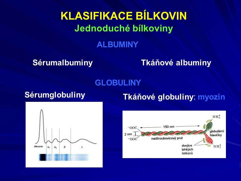 KLASIFIKACE BÍLKOVIN Jednoduché bílkoviny Sérumglobuliny Tkáňové globuliny: myozin GLOBULINY ALBUMINY SérumalbuminyTkáňové albuminy