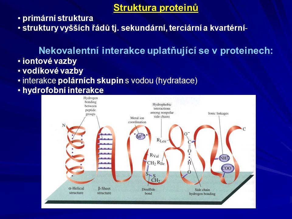 Struktura proteinů primární struktura struktury vyšších řádů tj.