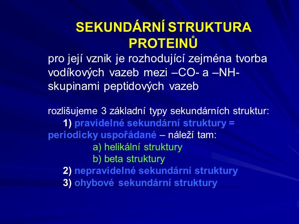 SEKUNDÁRNÍ STRUKTURA PROTEINŮ pro její vznik je rozhodující zejména tvorba vodíkových vazeb mezi –CO- a –NH- skupinami peptidových vazeb rozlišujeme 3 základní typy sekundárních struktur: 1) pravidelné sekundární struktury = periodicky uspořádané – náleží tam: a) helikální struktury b) beta struktury 2) nepravidelné sekundární struktury 3) ohybové sekundární struktury
