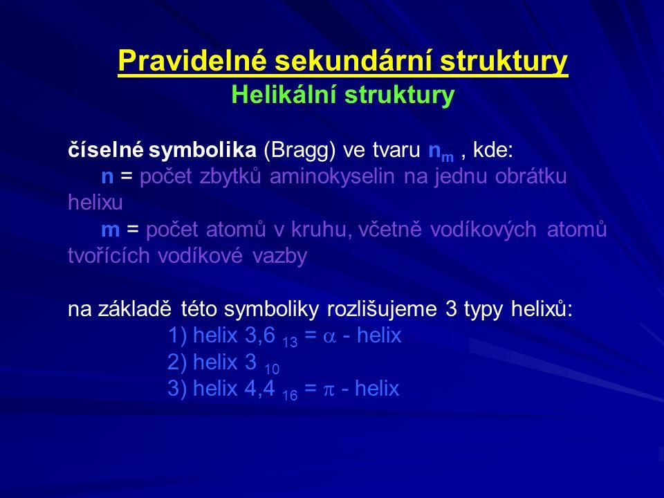 Pravidelné sekundární struktury Helikální struktury číselné symbolika (Bragg) ve tvaru n m, kde: n = počet zbytků aminokyselin na jednu obrátku helixu m = počet atomů v kruhu, včetně vodíkových atomů tvořících vodíkové vazby na základě této symboliky rozlišujeme 3 typy helixů: 1) helix 3,6 13 =  - helix 2) helix 3 10 3) helix 4,4 16 =  - helix