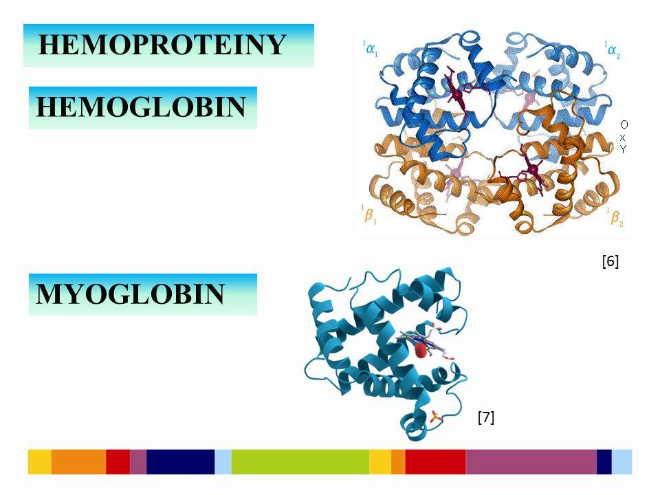 HEMOPROTEINY HEMOGLOBIN MYOGLOBIN [6] [7]