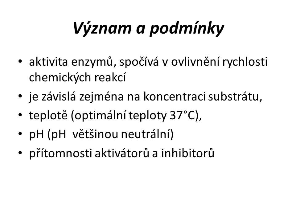 Význam a podmínky aktivita enzymů, spočívá v ovlivnění rychlosti chemických reakcí je závislá zejména na koncentraci substrátu, teplotě (optimální teploty 37°C), pH (pH většinou neutrální) přítomnosti aktivátorů a inhibitorů