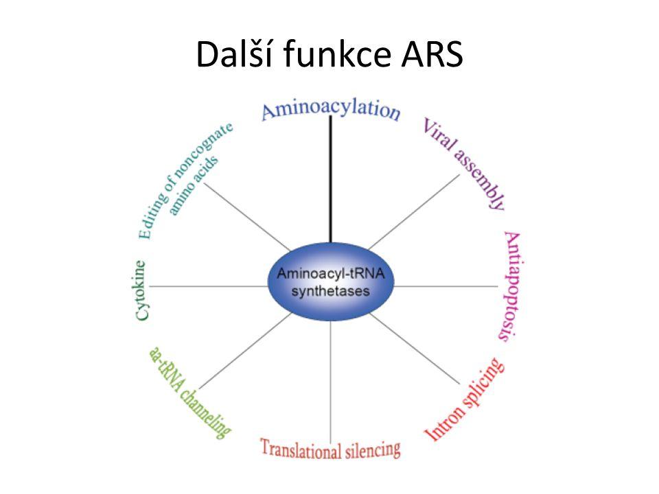 Další funkce ARS